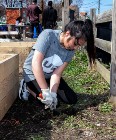 female student planting in UIC community garden